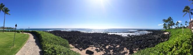 Poipu Beach Pana